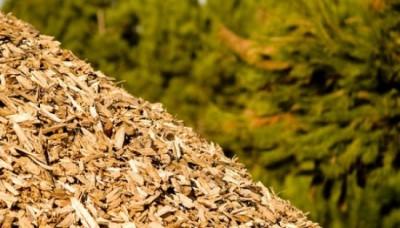 biomassa.veneto